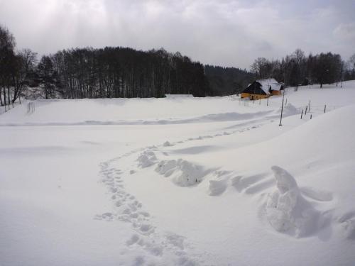 zima 2010 331